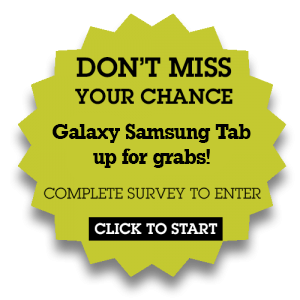 Survey-ipad-mini-300x3001